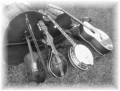 bluegrass[1]